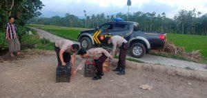 polisi mengamankan beberapa burung merpati yang tinggal pemiliknya disaat dilakukan penggerebekan
